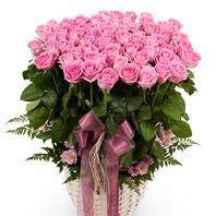 커가는 사랑(핑크)